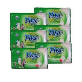 VIVA Multipurpose Soap 250g